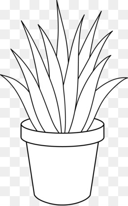 Black And White Plants PNG and Black And White Plants.