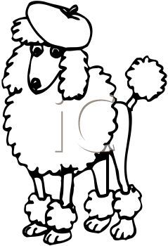 Collection of Poodle clipart.
