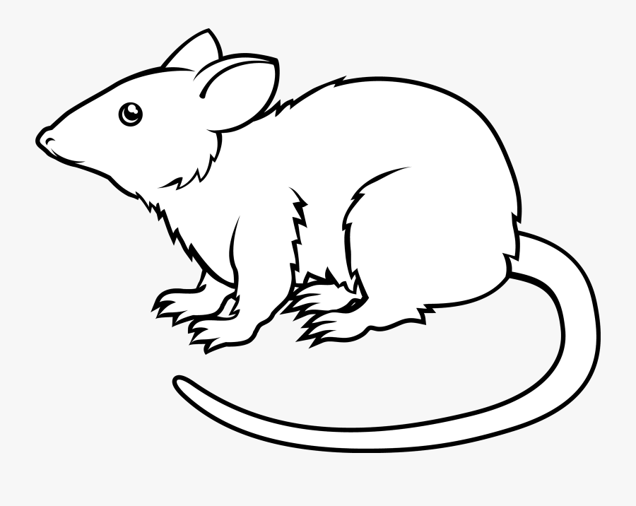 Animated Rat Images Black And White , Free Transparent.
