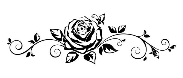 Top 60 Black And White Rose Clip Art Vector Graphics Complete Roses.
