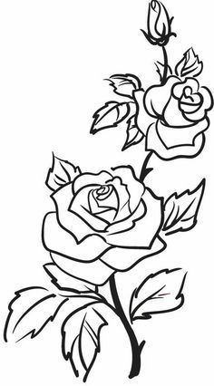 Roses, flowers, vine, leaves, bud, open, clip art, black and white.
