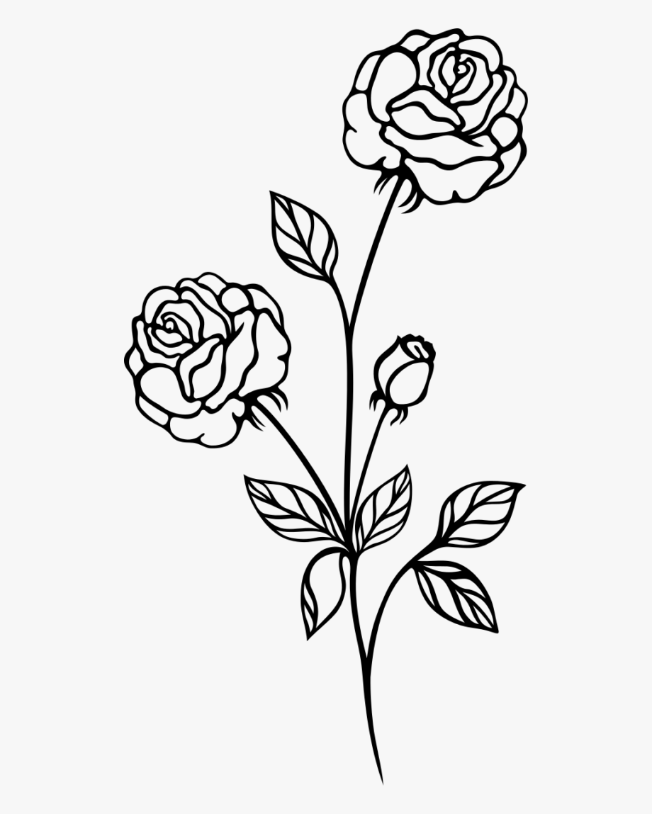 Single Rose Black And White Clipart.