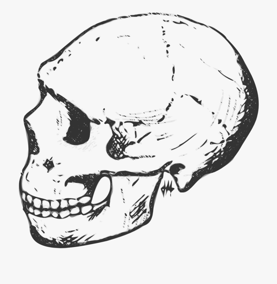 Black And White Skull Clipart.