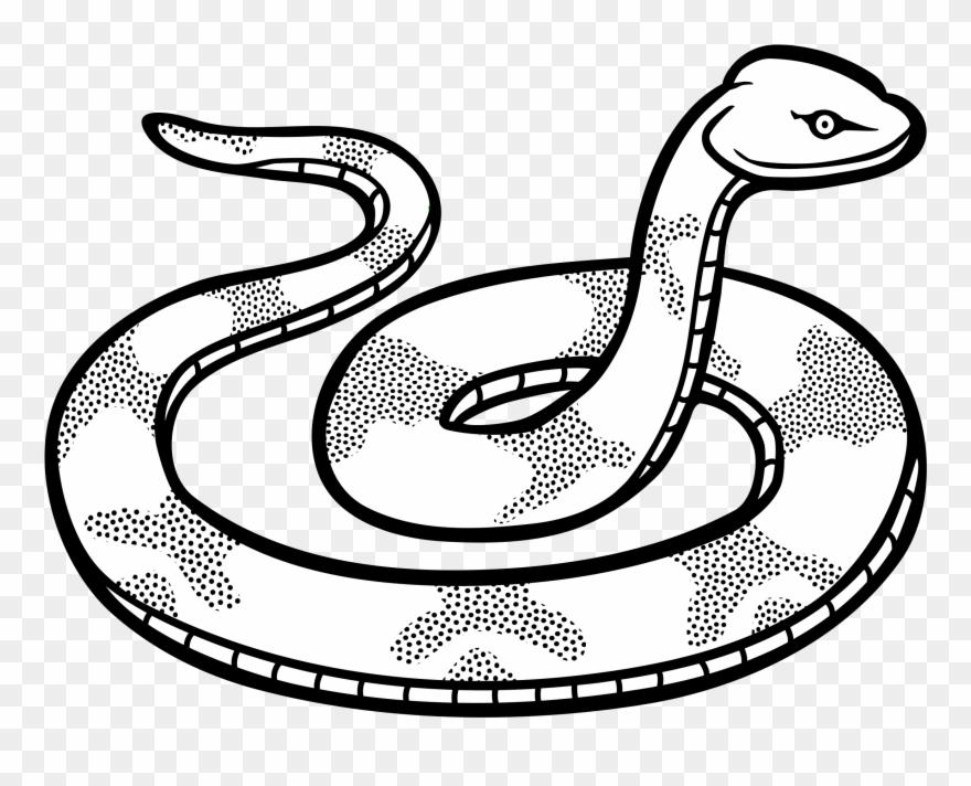 Snake Line Clipart.
