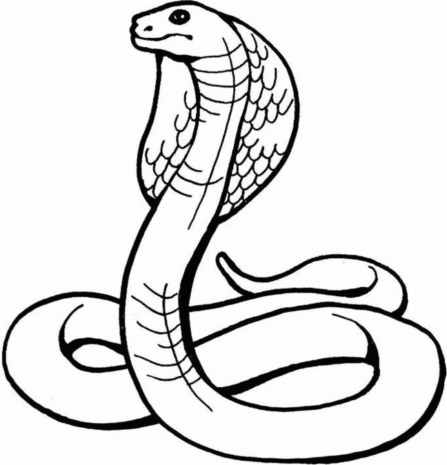 Snake Black And White Clipart Snake Black And White Black.