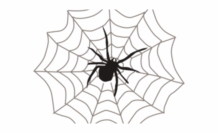 Free Black And White Spider Clipart, Download Free Clip Art.