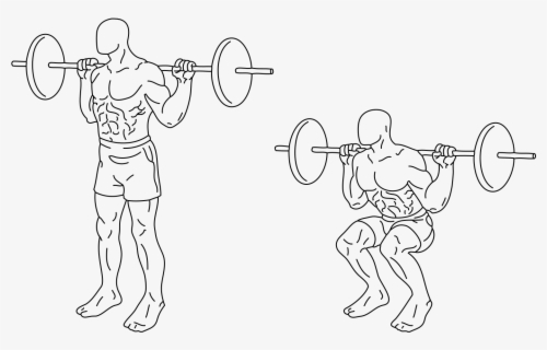 Free Squats Clip Art with No Background.