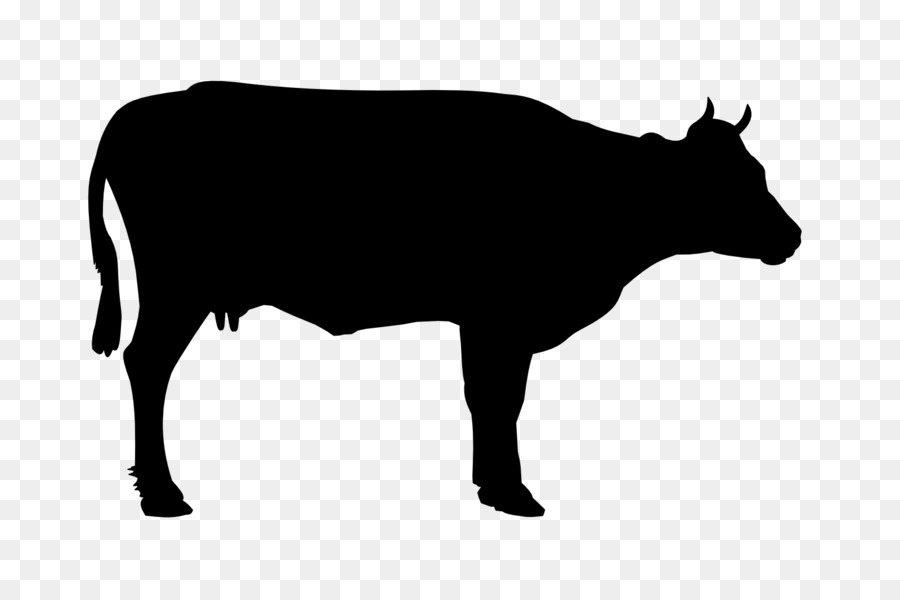 Beef clipart beef steer, Beef beef steer Transparent FREE.