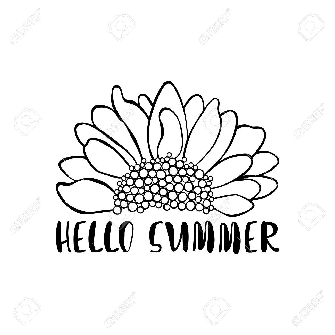 Hello summer. Sunflower. Isolated vector object on white background..