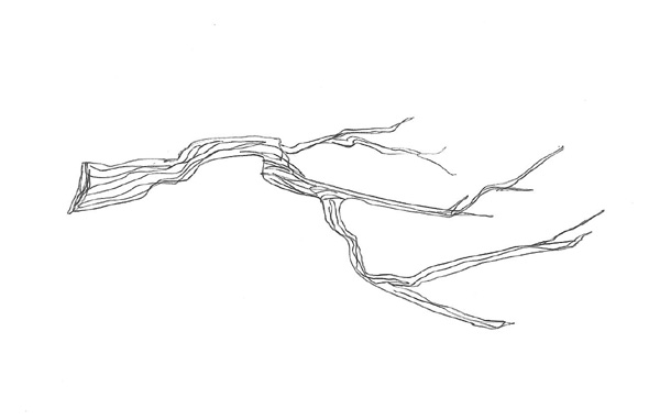 Free Twig Clipart Black And White, Download Free Clip Art.