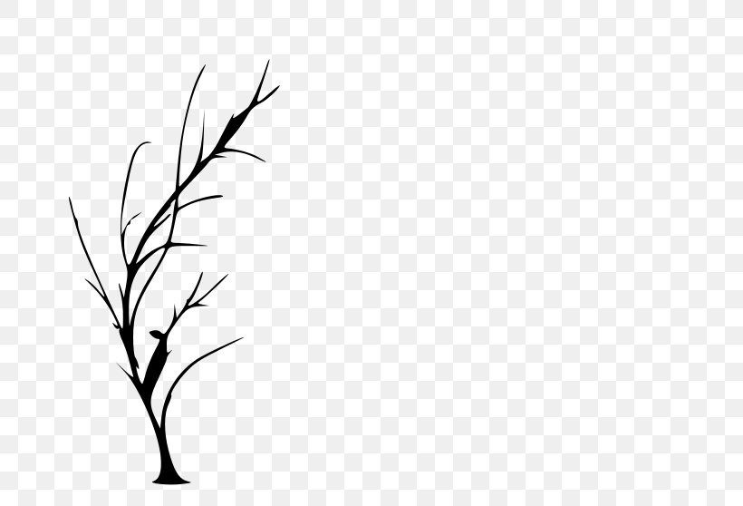 Tree Silhouette Drawing Clip Art, PNG, 800x558px, Tree.