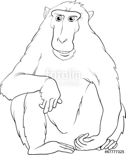 uakari animal cartoon coloring page\