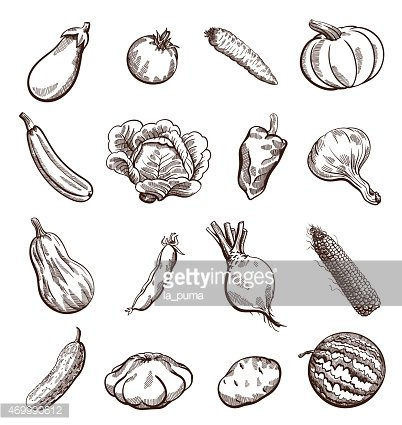 A variety of black and white vegetable icon illustrations.