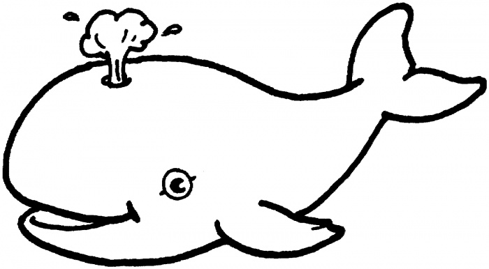 Whale Outline Drawing at GetDrawings.com.