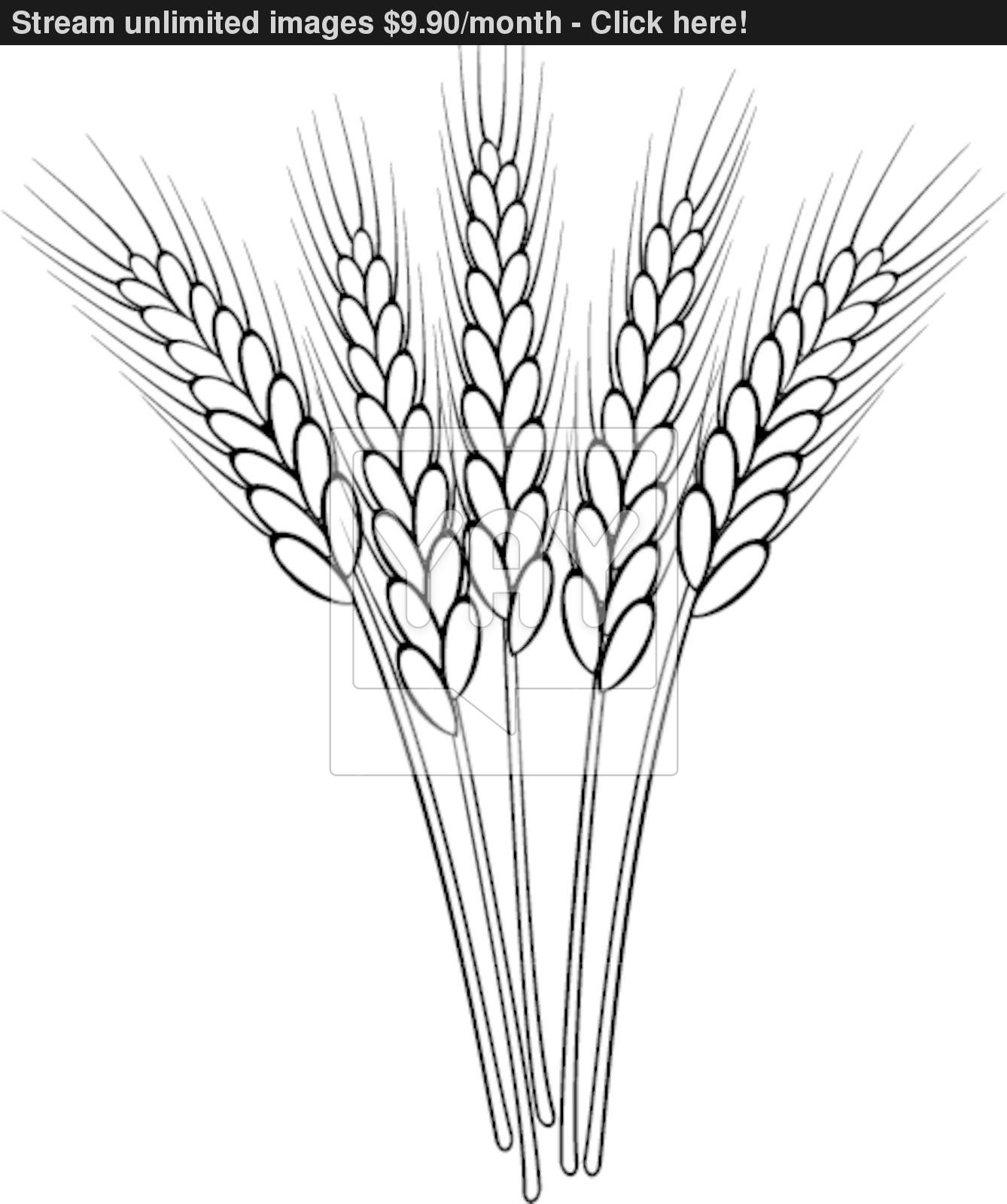 Wheat clipart black and white 5 » Clipart Station.