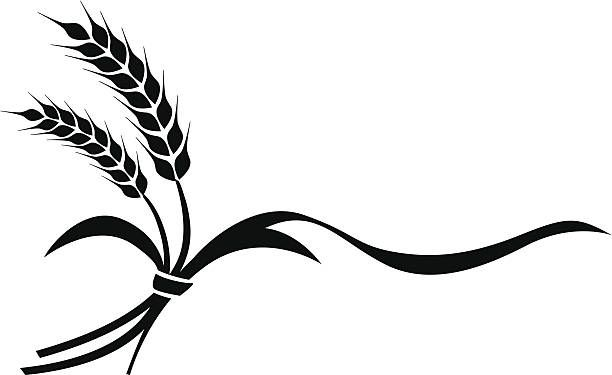 Image result for wheat clipart black and white.