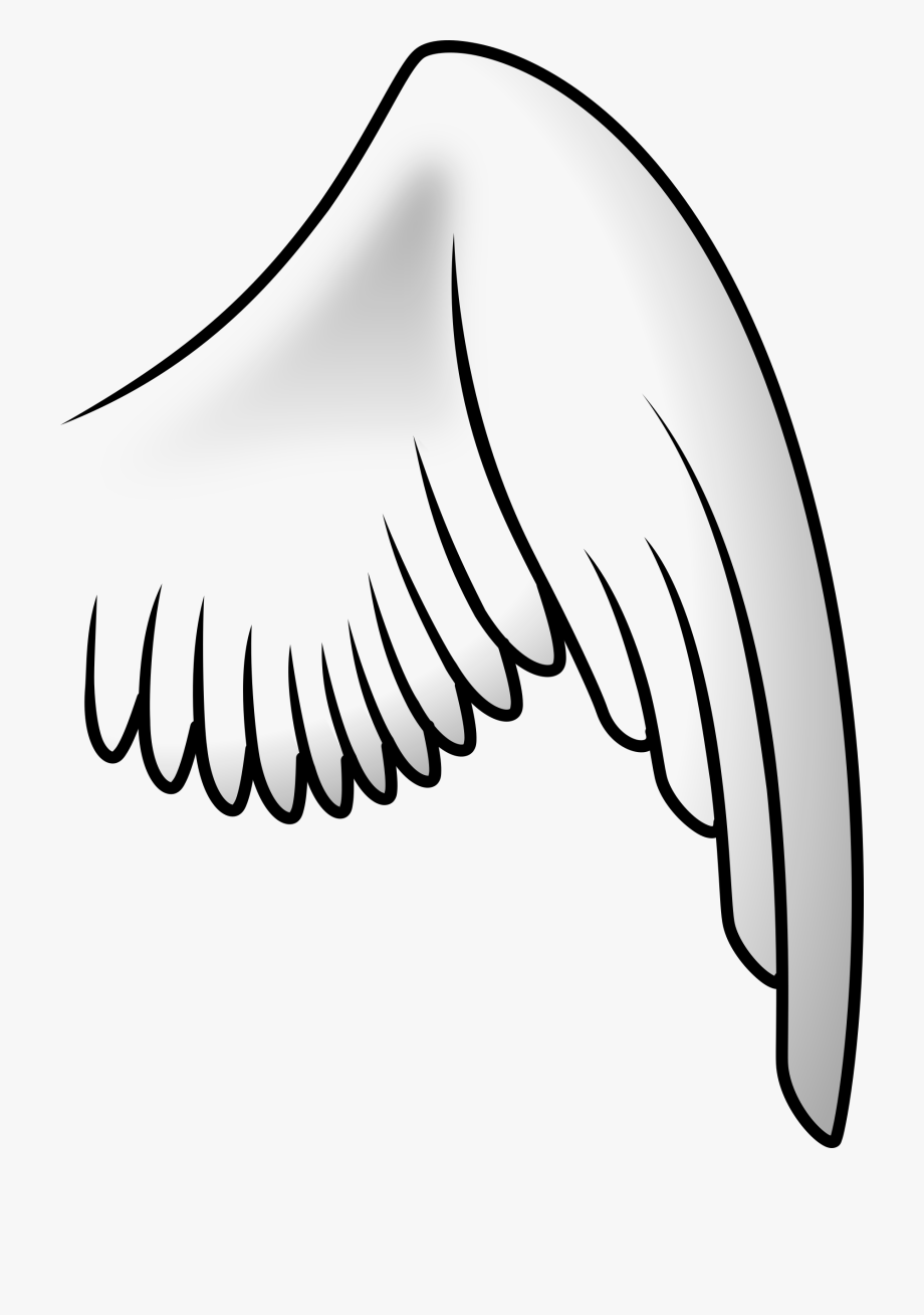 Wings Big Image Png.