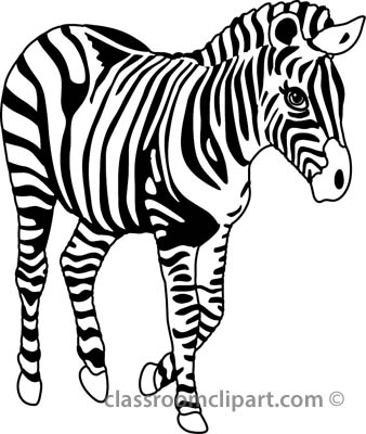 Zebra Clipart Black And White.