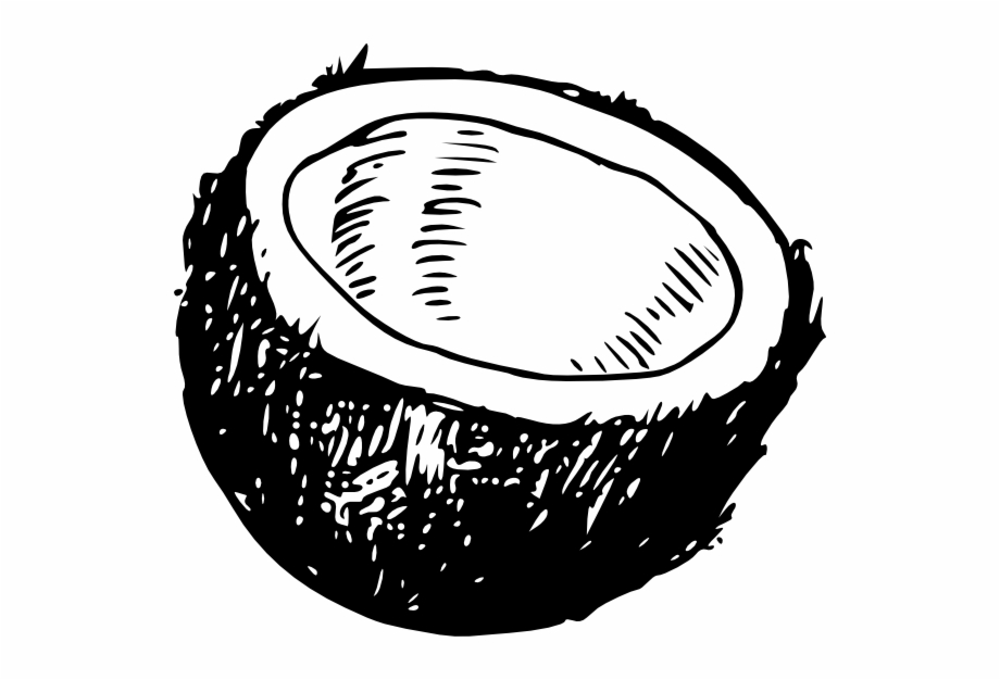 How To Set Use Coconut Svg Vector Coconut.