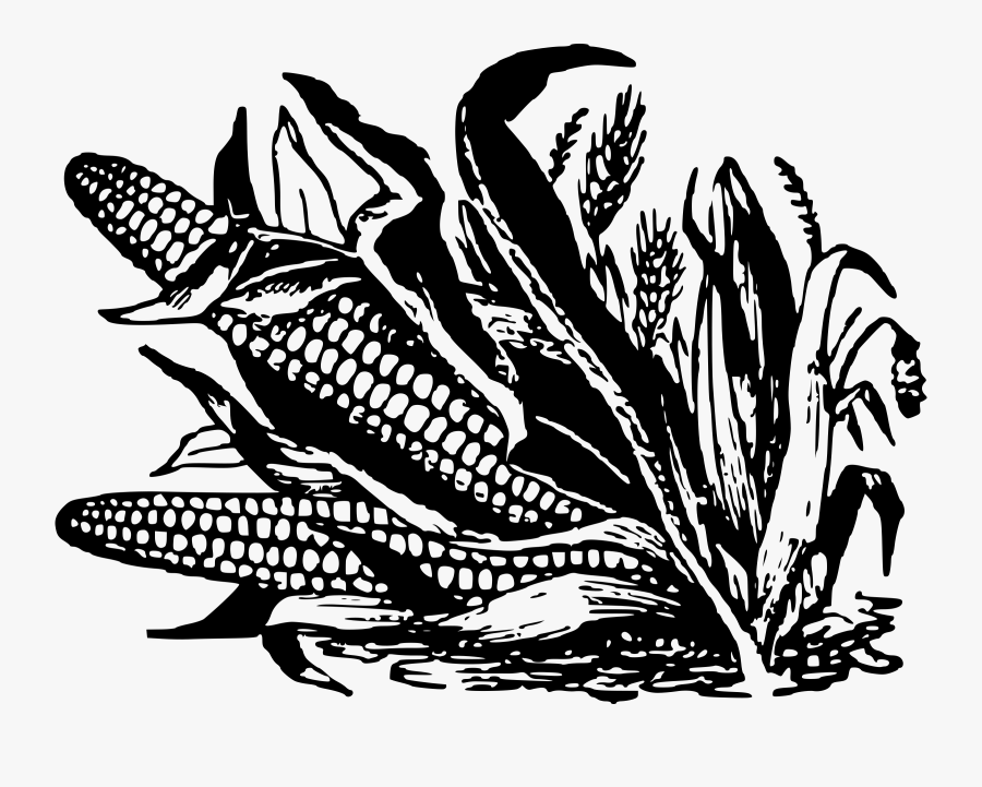 Corn Clipart Black And White.