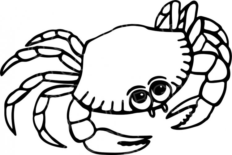 Crab clipart black and white 6 » Clipart Station.