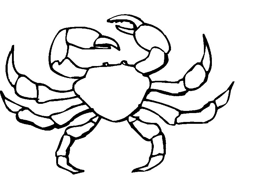 Crab black and white crab black and white clipart clipart.