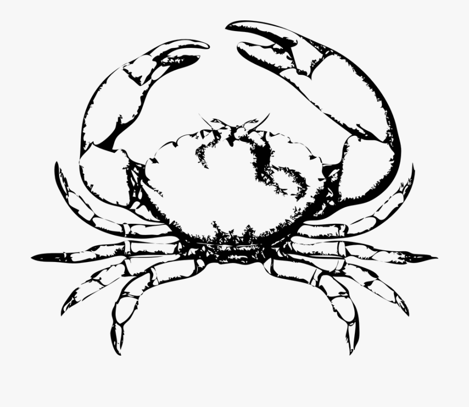 Crab Claw Png.