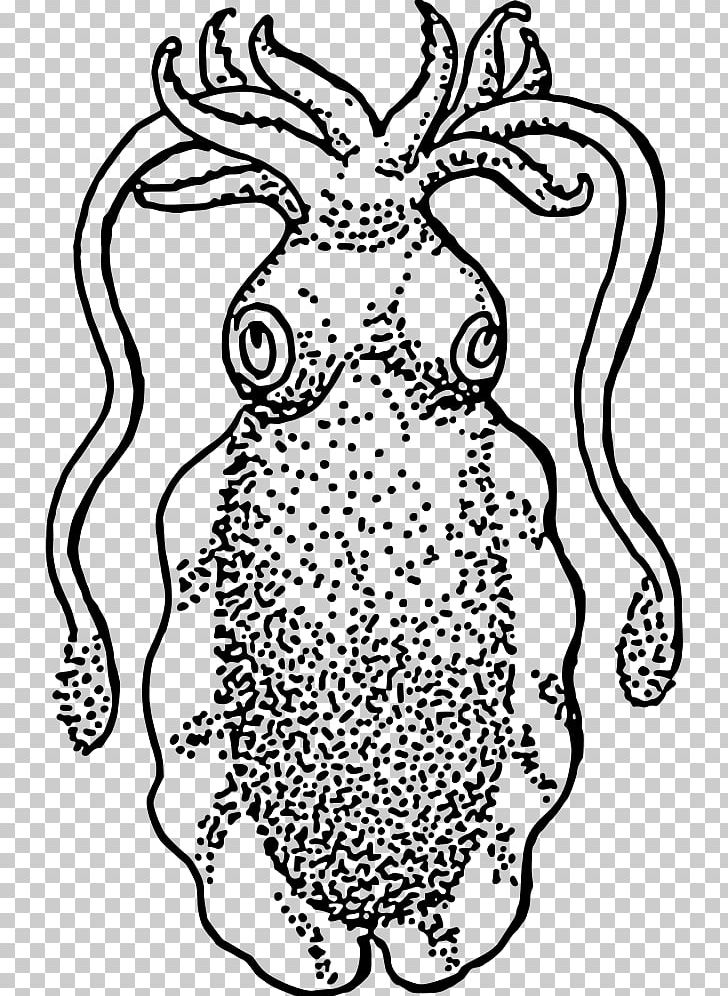Squid Cuttlefish Drawing PNG, Clipart, Animal, Area, Art.