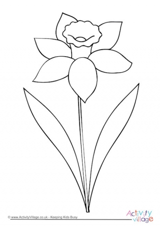 Daffodil clipart black and white 5 » Clipart Station.
