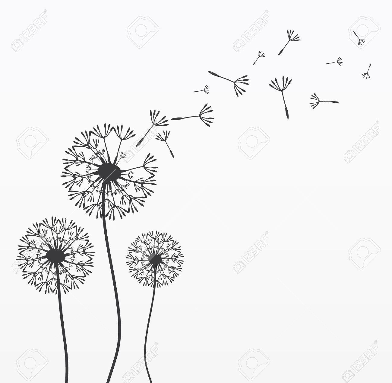 Black and white dandelion clipart 6 » Clipart Portal.