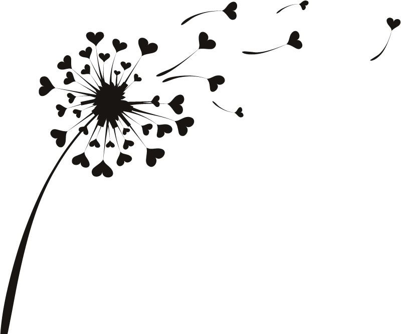 Black And White Dandelion Drawing.
