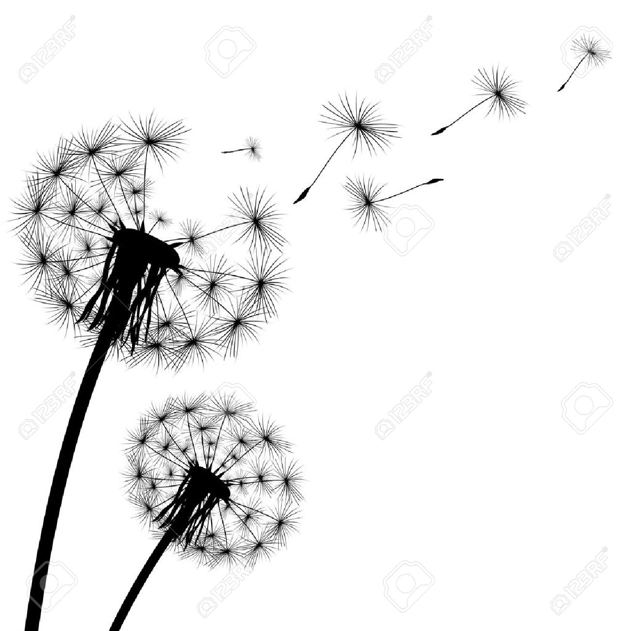 black silhouette with flying dandelion buds on a white background.