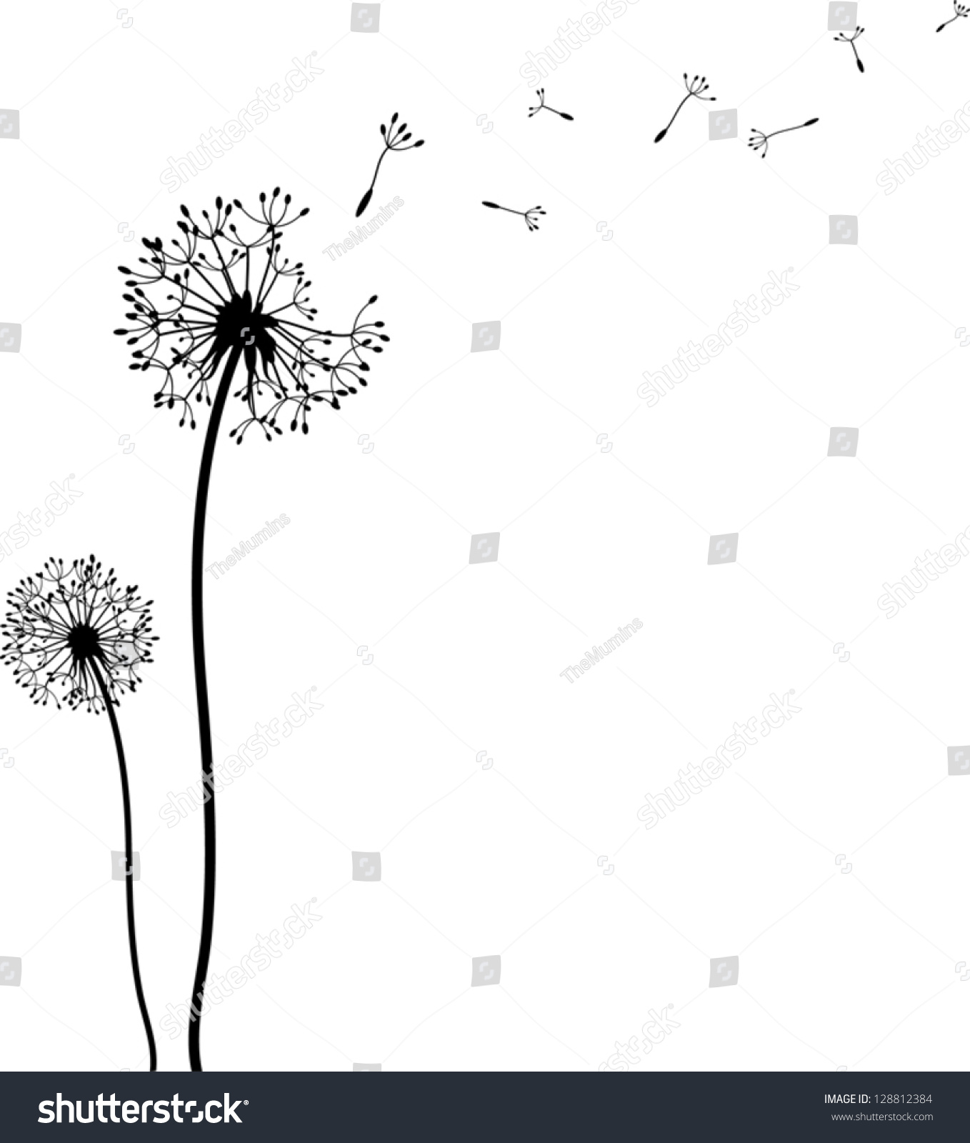 Dandelion Black And White Drawing.
