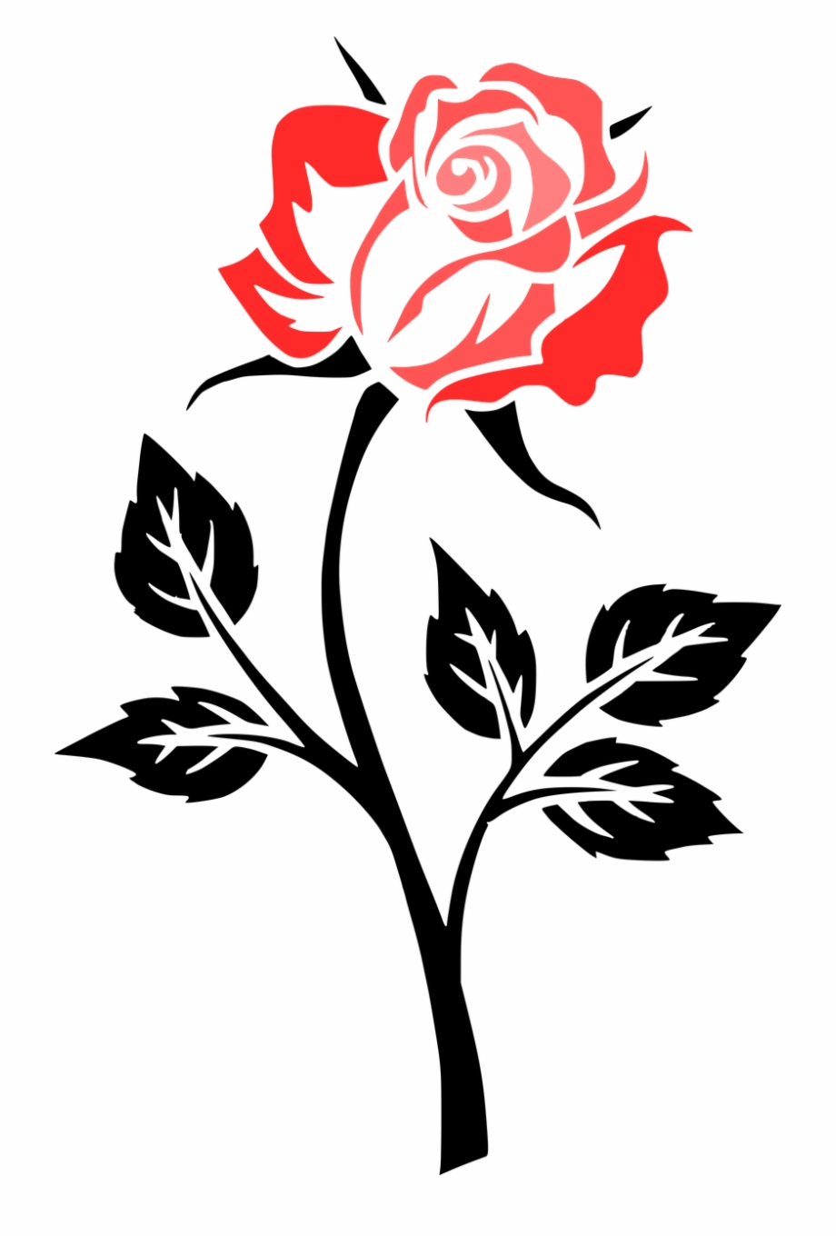 Flower Rose Contour Outlines Png Image.