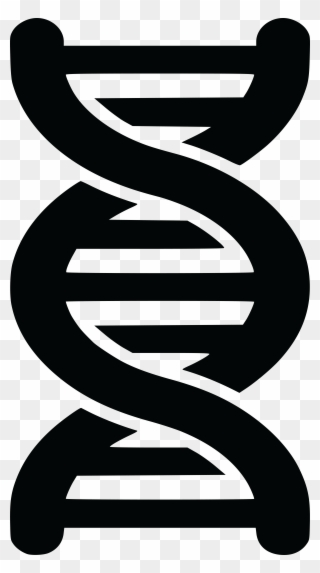 Free Clipart Of A Black And White Dna Strand Double.