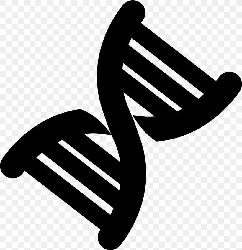 Nucleic Acid Double Helix DNA Clip Art, PNG, 948x981px.