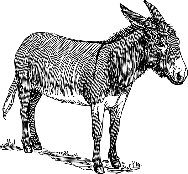 Donkey Clip Art at Clker.com.