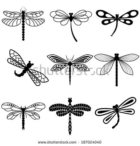 Dragonfly Stock Images, Royalty.