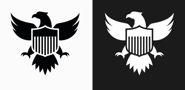 Best Black And White Eagle Illustrations, Royalty.