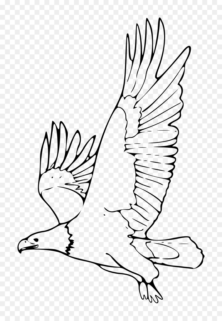 Black and white eagle clipart 5 » Clipart Station.