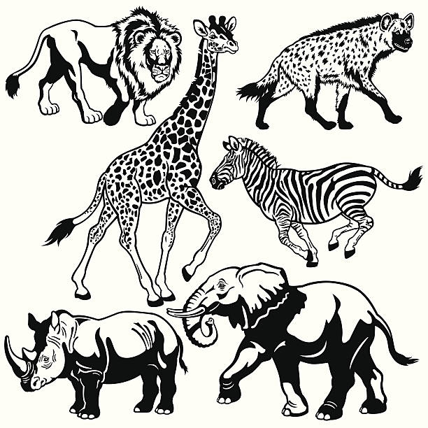 Top 60 Black And White Elephant Clip Art, #472000.