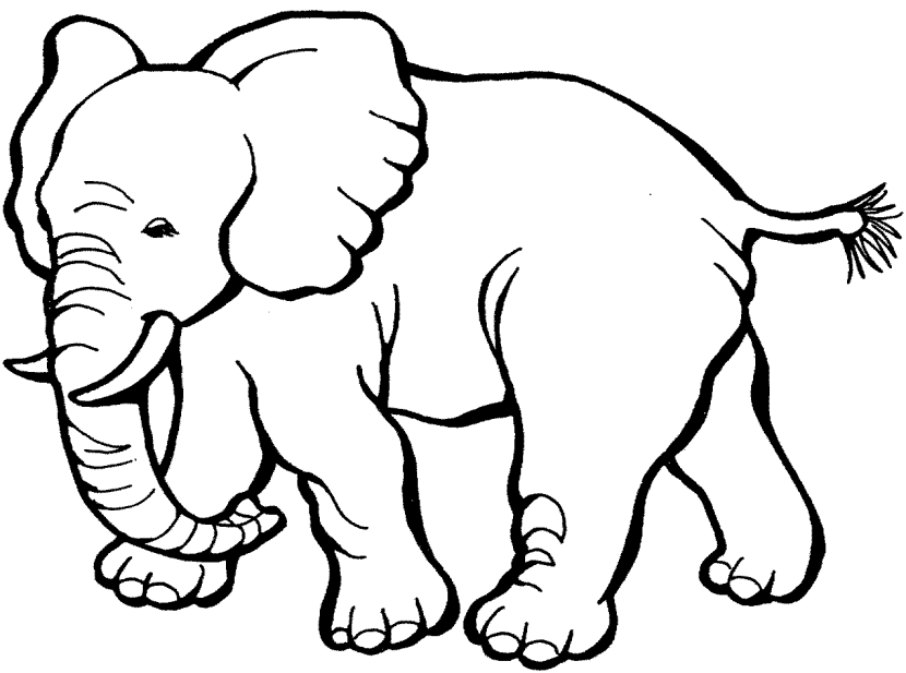 117 Elephant Black And White free clipart.