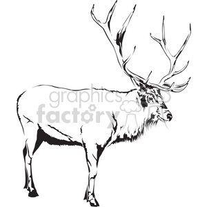 black and white Elk side profile clipart. Royalty.