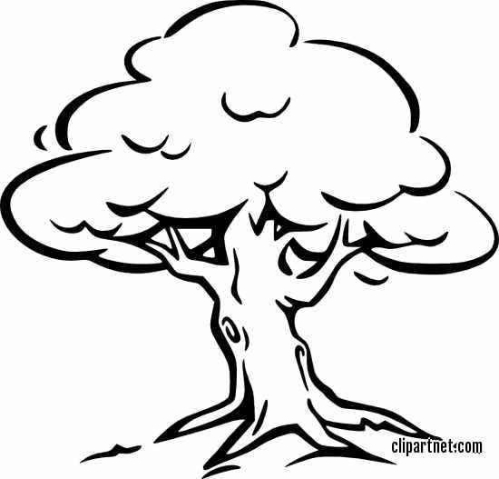 Family Tree Clipart Black And White Tree Clipart, Clipart Black.