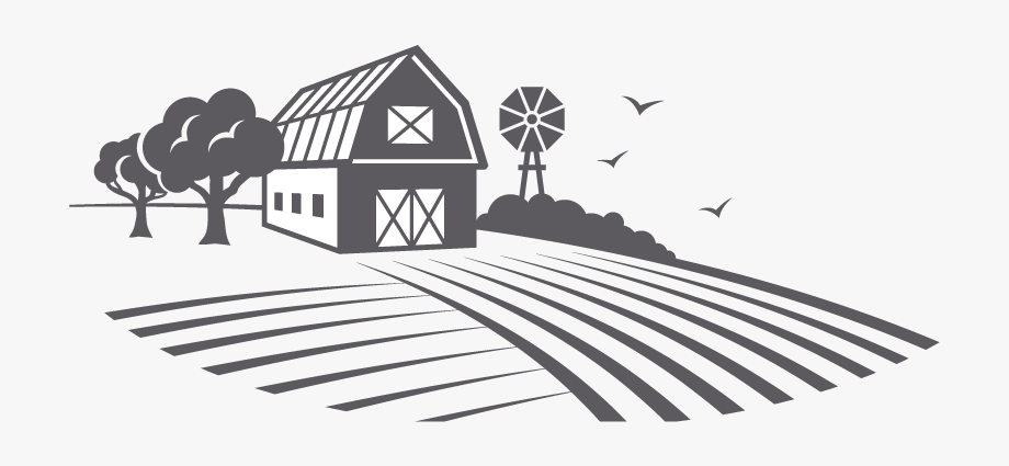 Fresh Essentials Farm Image Ⓒ.