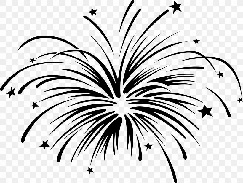Clip Art Black And White Fireworks Image Drawing, PNG.