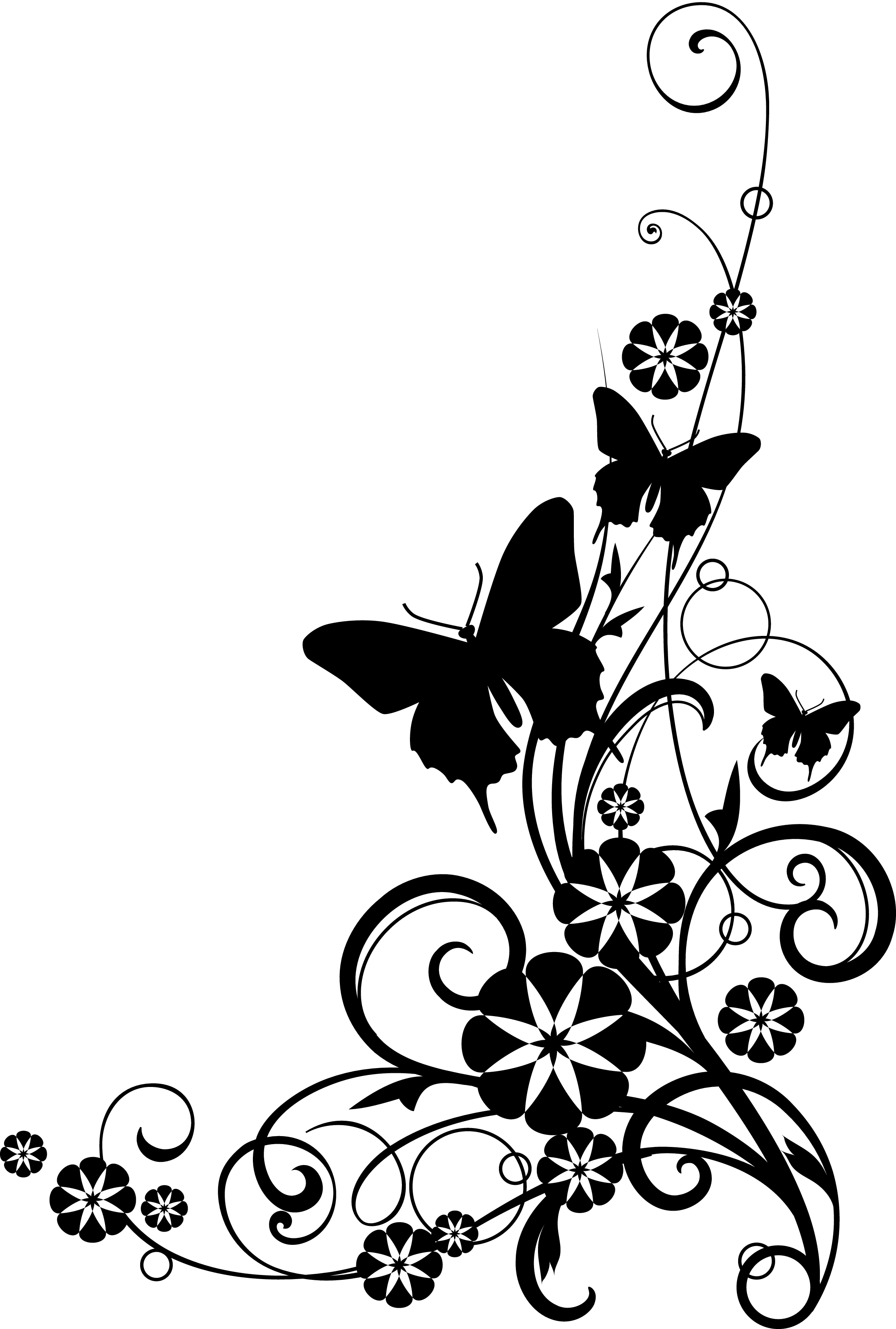 Black and white flower border clipart #41803.