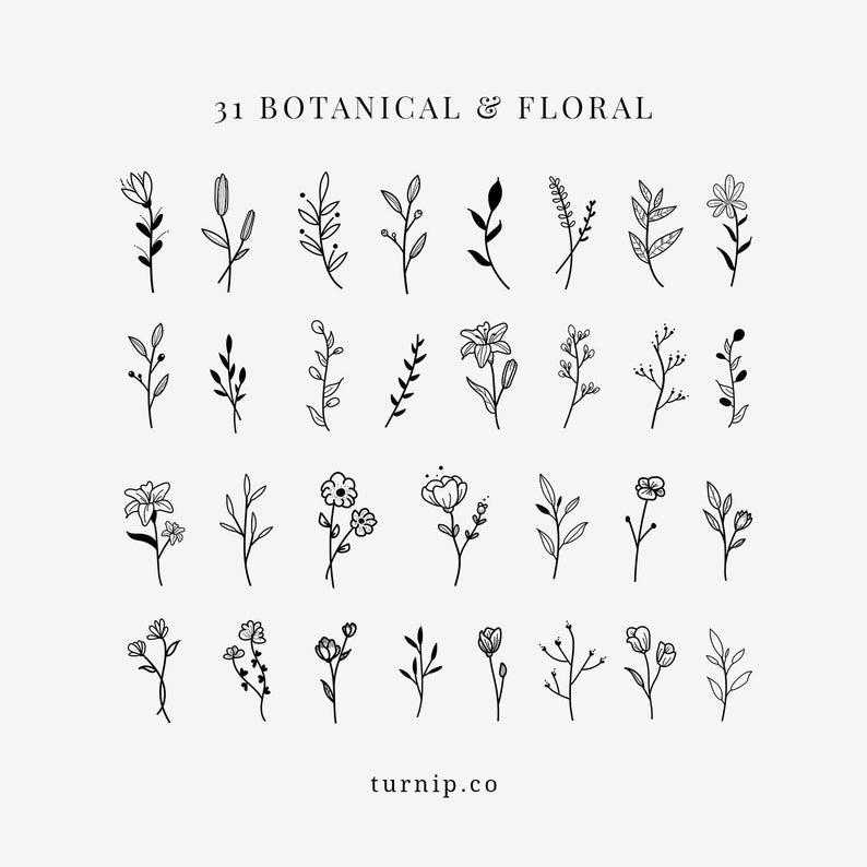 BOTANICAL & Floral Black White Clipart Bundle Set PNG Flowers Files Designs  Vector PDF Wall Art Print Plant Sprigs Wedding Elegant Leaf.