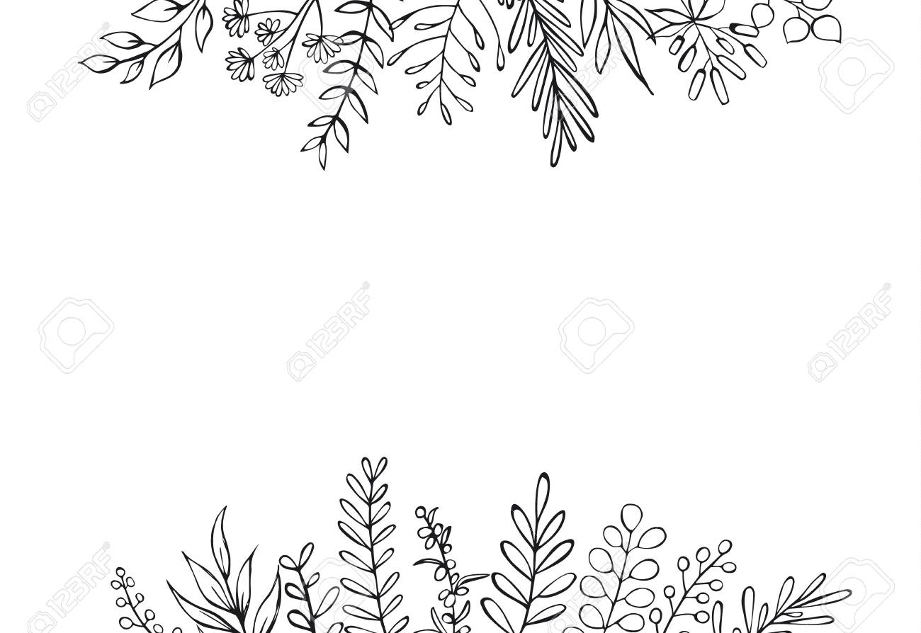 black and white floral hand drawn farmhouse style outlined twigs...