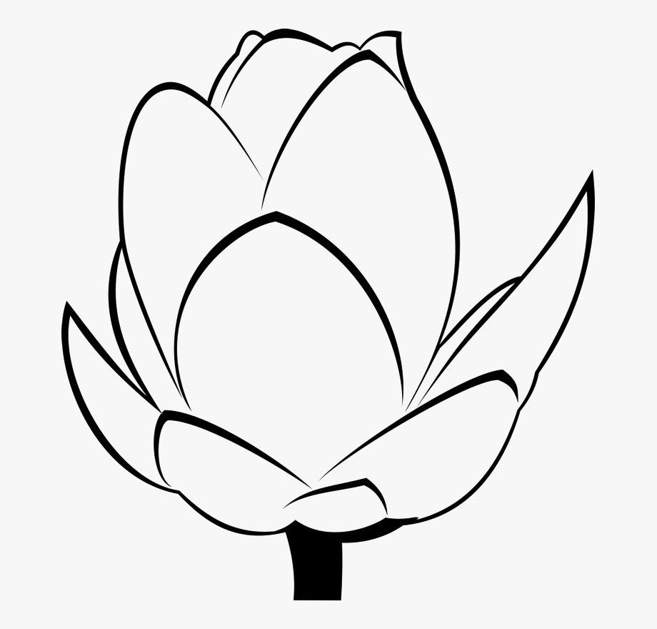 Bud Clipart Black And White.